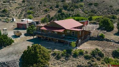 Gunnison Single Family Home For Sale: 16020 W Highway 50 Highway