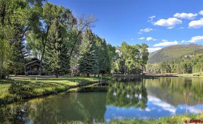 Durango Single Family Home For Sale: 9920 Cr 250