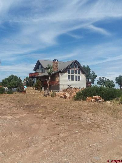 Ouray County Single Family Home For Sale: 2655 T&m Road