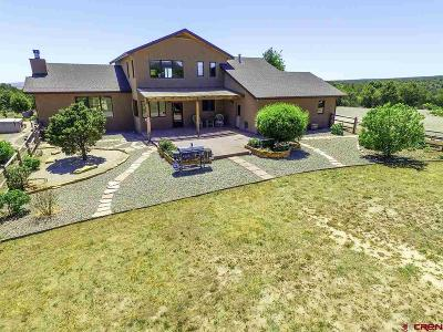 Hesperus Single Family Home UC/Contingent/Call LB: 500 Sand Ridge Court