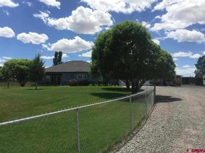 Montrose Single Family Home UC/Contingent/Call LB: 12703 6100 Road