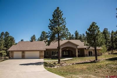 Pagosa Springs Single Family Home UC/Contingent/Call LB: 60 Monterosa Court