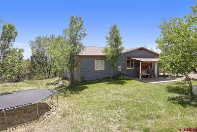 Ignacio Single Family Home For Sale: 139 Mountain View Lane