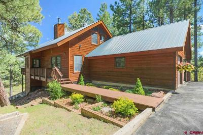 Pagosa Springs Single Family Home UC/Contingent/Call LB: 74 Walnut Place