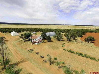 La Plata County Farm For Sale: 3500 Cr 100