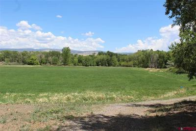 Montrose Residential Lots & Land For Sale: Hwy 550