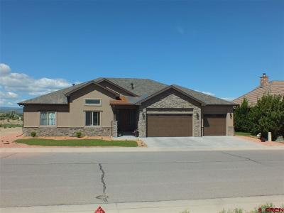 Montrose Single Family Home For Sale: Sleeping Bear Dr
