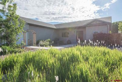 Montrose Single Family Home For Sale: 320 6410 Court