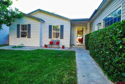 Montrose Single Family Home UC/Contingent/Call LB: 1947 Sara E Lane