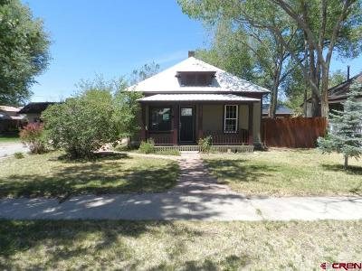 Montrose Single Family Home UC/Contingent/Call LB: 521 N 4th Street