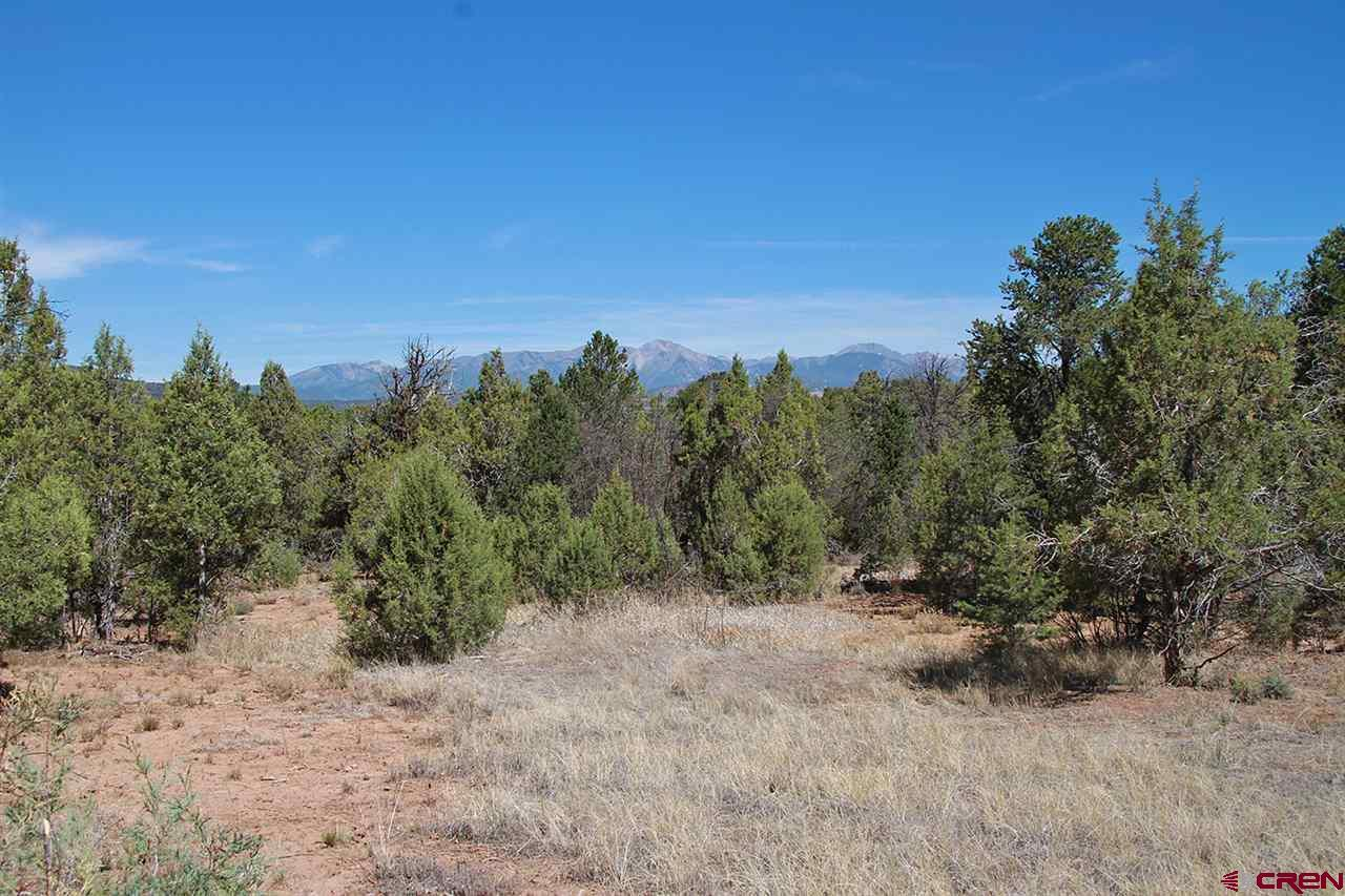 11 8 acres in Durango for $200,000