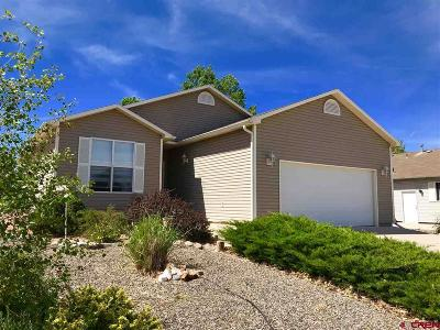 Montrose Single Family Home For Sale: 1742 Ironton Street