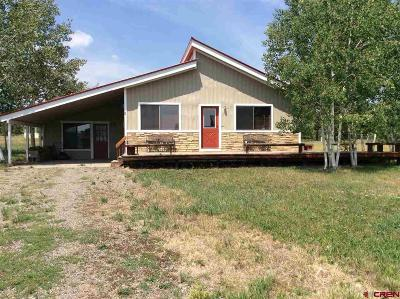 Pagosa Springs Single Family Home For Sale: 60 Lilac Court