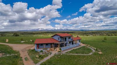 La Plata County Farm For Sale: 1072 County Road 117