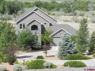 Montrose Single Family Home For Sale: 17133 Pintado