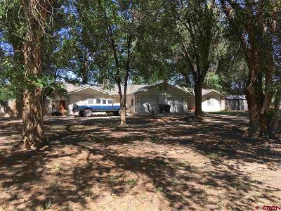 Delta Multi Family Home For Sale: 1775 G Road