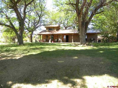 Cortez Farm For Sale: 9697 Road G