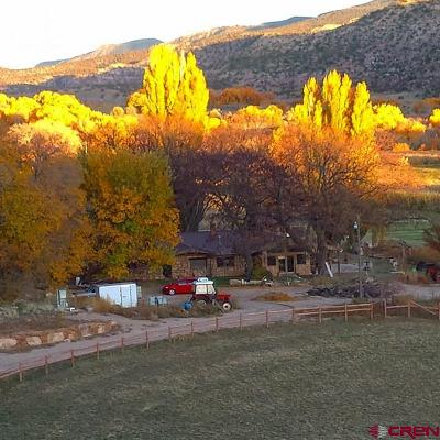 Cortez Farm For Sale: 9631 Road G