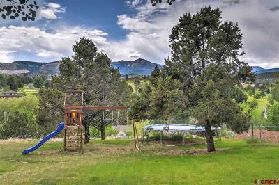La Plata County Single Family Home For Sale: 203 Hillcrest Drive