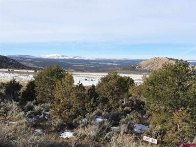 Montrose Residential Lots & Land For Sale: 7250 Road