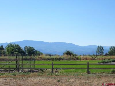 Montrose Residential Lots & Land For Sale: Percheron Court