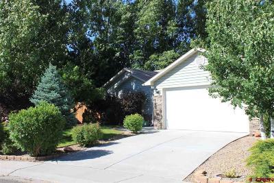 Montrose Single Family Home For Sale: 1103 Five Mile Creek Avenue