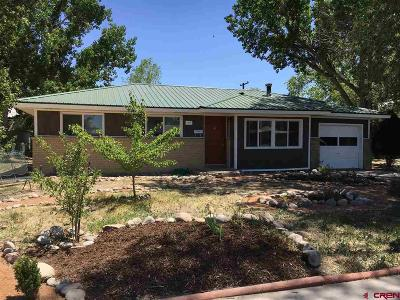 Montrose Single Family Home UC/Contingent/Call LB: 704 S 12th Street
