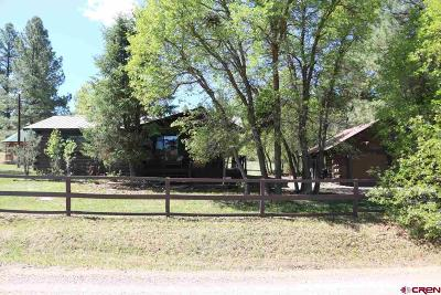 Pagosa Springs Single Family Home For Sale: 97 River Run/Echo Lane