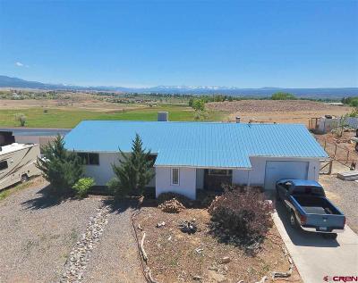 Montrose Single Family Home For Sale: 67064 E Borough Drive