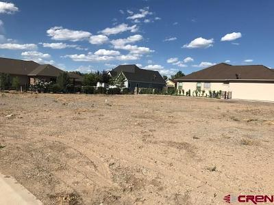Montrose Residential Lots & Land For Sale: 6308 Way