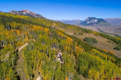 Crested Butte Single Family Home For Sale: 450 Oversteeg Gulch Road