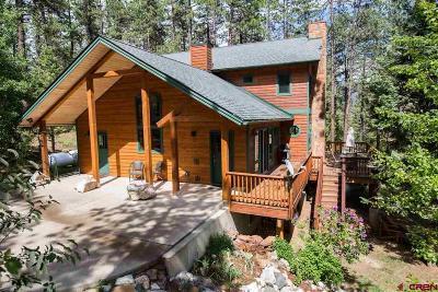 Durango Single Family Home UC/Contingent/Call LB: 380 Spruce Mesa Drive