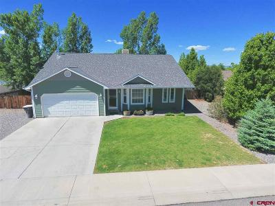 Montrose Single Family Home UC/Contingent/Call LB: 2000 Stan Drive