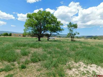 Cedaredge Residential Lots & Land For Sale: 970 SE Fairway Drive