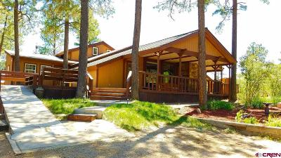 Durango Single Family Home UC/Contingent/Call LB: 51 Wildcat Road