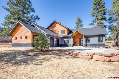 La Plata County Single Family Home For Sale: 67 Engine Creek Trail