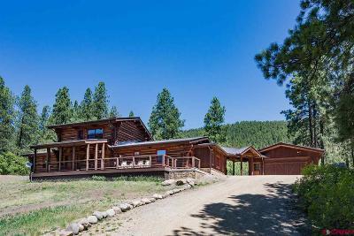 La Plata County Single Family Home For Sale: 2028 Cr 245