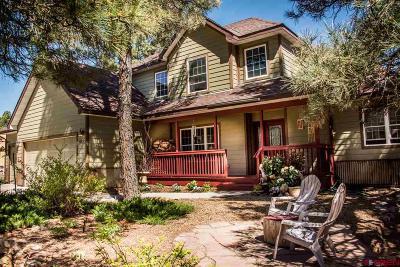 Pagosa Springs Single Family Home For Sale: 653 Oakwood Circle