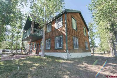 Montrose Single Family Home For Sale: 68840 Kinikin Road