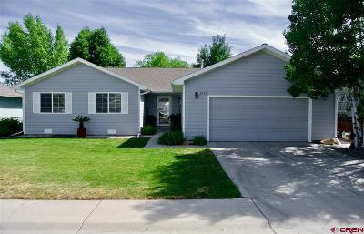 Montrose Single Family Home For Sale: 1931 Ouray Drive