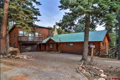 La Plata County Single Family Home For Sale: 500 Sierra Drive