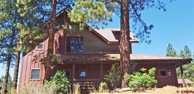 La Plata County Single Family Home For Sale: 181 Copper Rim Trail
