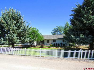 Delta County Single Family Home UC/Contingent/Call LB: 21135 Mountain Village Drive