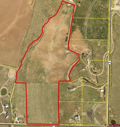 Durango Residential Lots & Land For Sale: Cr 303