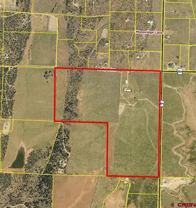 Durango Residential Lots & Land For Sale: 1295 Cr 301