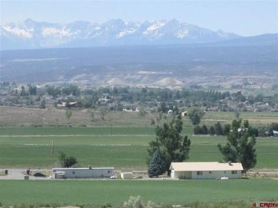 Montrose Residential Lots & Land For Sale: 6900 Road