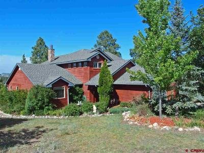 La Plata County Single Family Home For Sale: 124 Porter Way