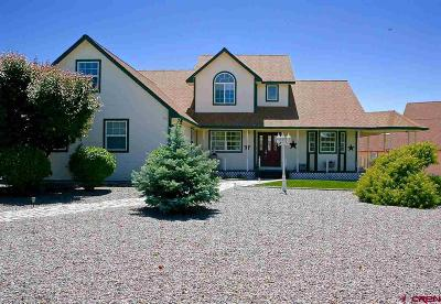 Delta CO Single Family Home UC/Contingent/Call LB: $379,900