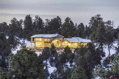 Ouray County Single Family Home For Sale: 314 Hummingbird Trail