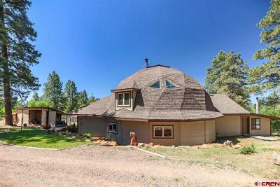 Pagosa Springs Single Family Home For Sale: 290 Natures Way